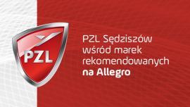 Filtry PZL Sędziszów wśród marek rekomendowanych na Allegro